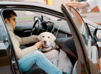 Cabify lanzó una versión optimizada de su app 100% accesible para personas ciegas